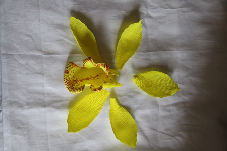 how to make paper orchids