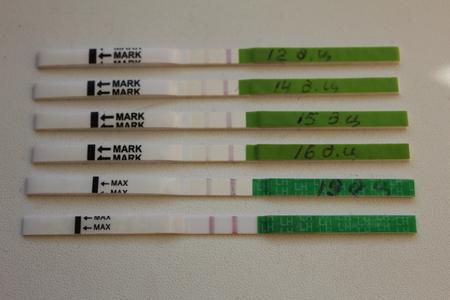 20 дц тест на беременность